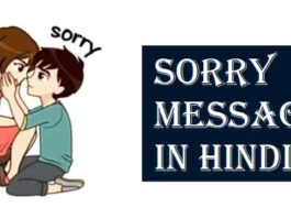 Sorry-Message-Status-Quotes-In-Hindi (1)
